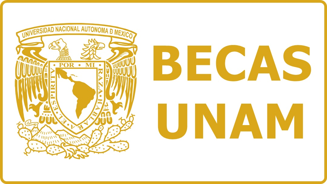 Beca Para Alumnos Deportista » Requisitos y Registro | Becas México