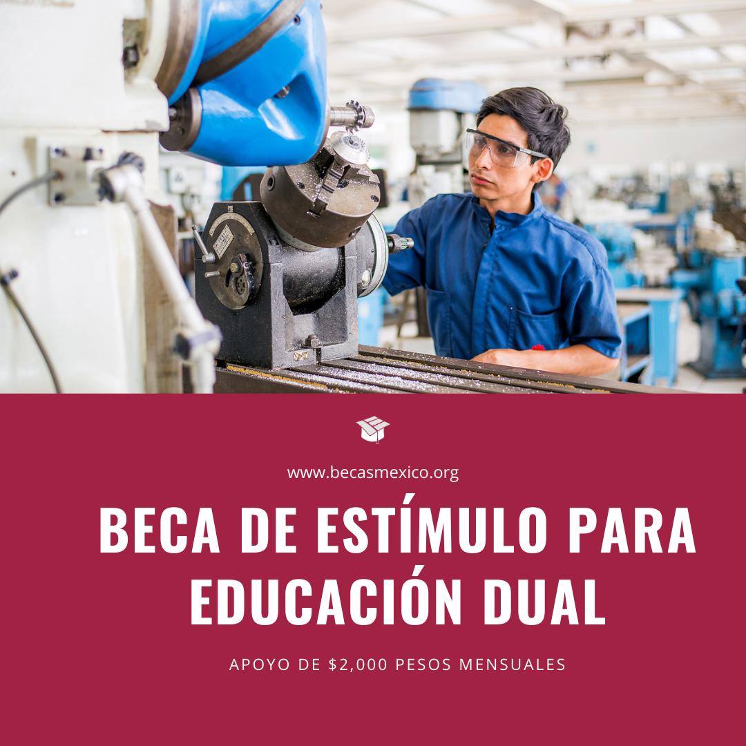 Beca de Estímulo para Educación Dual 2021