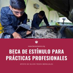 Beca de Estímulo para Prácticas Profesionales 2021